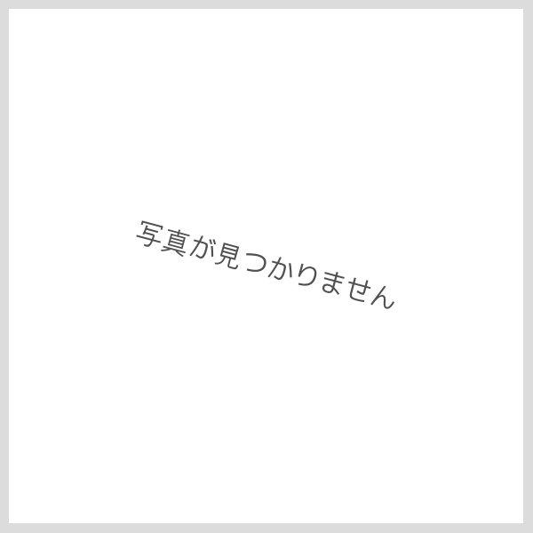 画像1: オートムギ 10g [生活の木] (1)